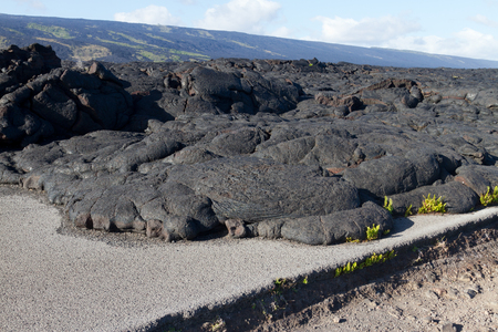 volcanism: Lava blocked the road in Hawaii