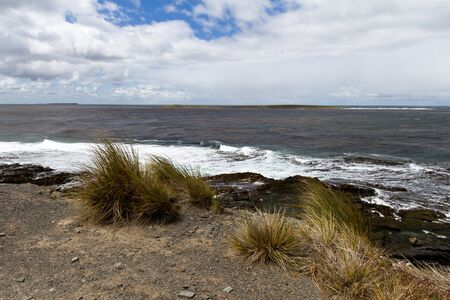 falkland: Falkland Island Coastline