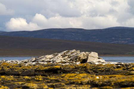 falkland: Coastline Falkland Islands