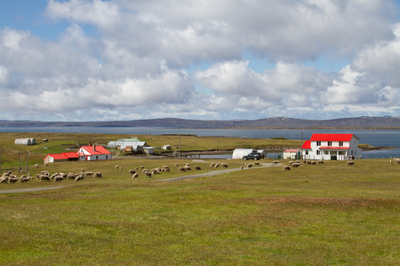 contryside: Contryside Falkland Islands Stock Photo