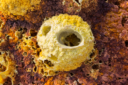 iron oxide: Inside the explosion crater of Dallol volcano, Danakil Depression, Ethiopia