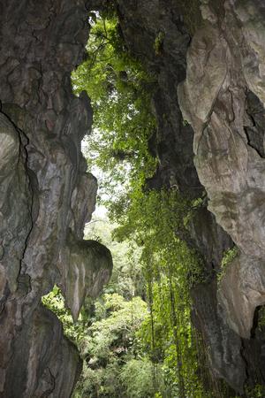 pinar: Cuba, Cave Santo Tomas, Vinales Stock Photo