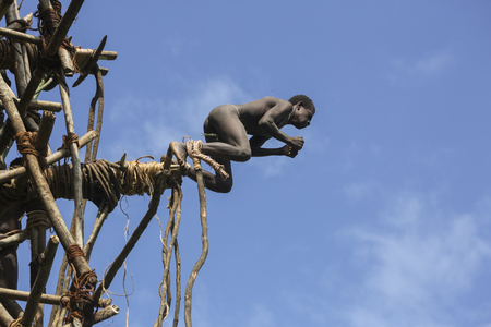 Traditional land diving ritual (Nangol) with vines tied to their feet, origin of modern Bungee Jumping