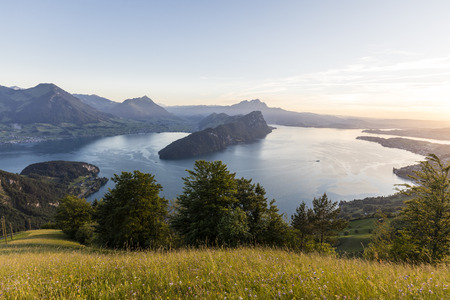 Sunset on Lake Lucerne with Buergenstock and Mount Pilatus with grasses in the foreground