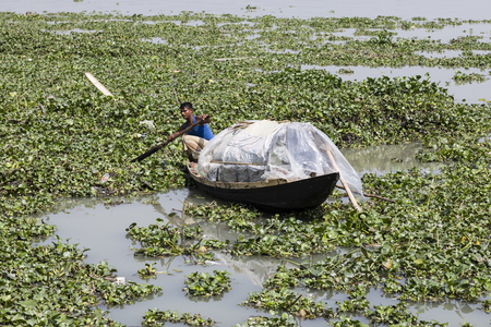 Khulna, Bangladesh, February 28 2017: Man rowing with a small wooden boat on a river full of aquatic plants near Khulna