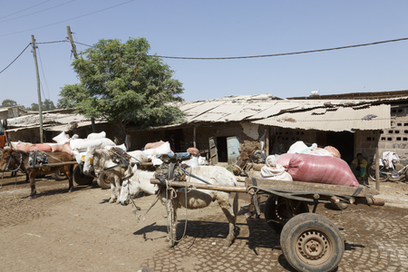 Bahir Dar, Ethiopia, February 14 2015: Donkey carriages stands at a market ready to transport goods