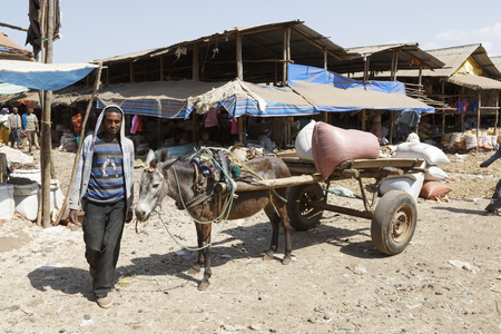 Bahir Dar, Ethiopia, February 14 2015: A donkey carriage with a farmer standing by on a market to transport goods Editorial