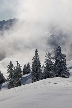 Magical winter landscape with rising fog and the sun against the light in central Switzerland Archivio Fotografico