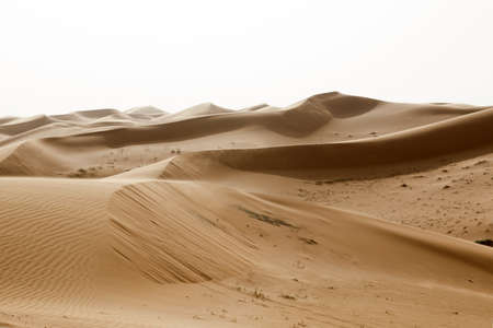 Beautiful landscape with sand dunes in Saudi Arabia against the light