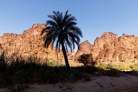 Wadi Disah, also known as Wadi Qaraqir, is a 15 kilometer long canyon running through the Jebel Qaraqir, a sandstone massif lying about 80 kilometers south of the city of Tabuk in Saudi Arabia Imagens