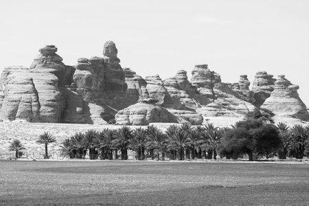 Landscape near Al Ula, Saudi Arabia with date palms