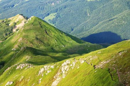 아펜 니노, 이탈리아 스톡 콘텐츠