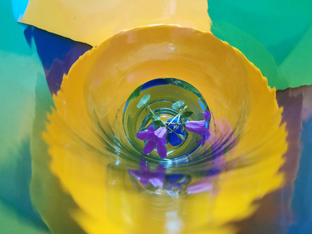 Flowers and glass, abstract photographic image and fantasy Stock Photo