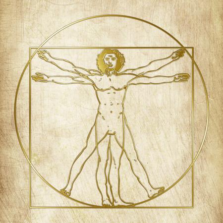 Vitruvian man, Leonardo Da Vinci, graphic elaboration