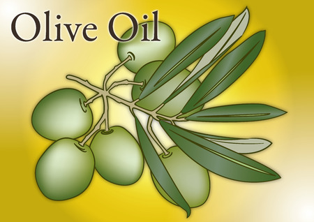 Olive branch with fruits. Vector illustration. Çizim