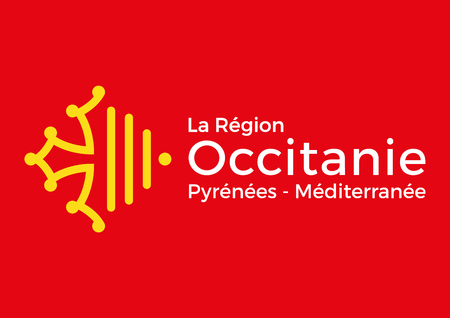 Occitanie regional flag, France, vector illustration