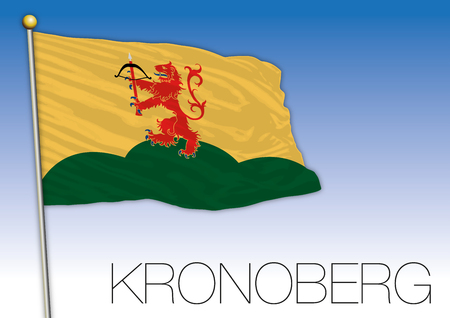 Kronoberg regional flag, Sweden, vector illustration 向量圖像