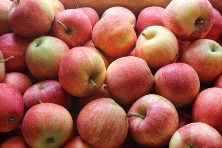Apples ready for sale in the store Archivio Fotografico - 129342856