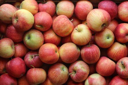 Apples ready for sale in the store Archivio Fotografico - 129342861