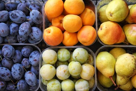Various fruits ready for sale in shop Archivio Fotografico - 129342860