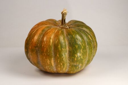 Pumpkin, big vegetable fruit, cooking ingredient, halloween symbol Banco de Imagens