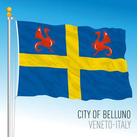 Belluno, flag of the city and municipality, veneto, Italy, vector illustration