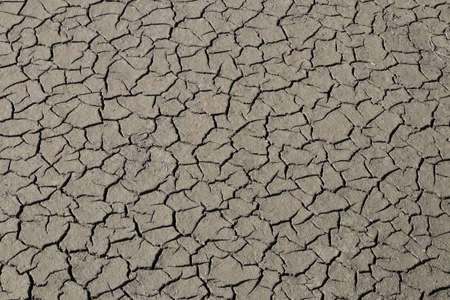 Natural cracks in the mud of a river