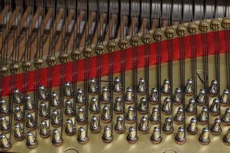 Piano strings, detail, musical instrument, close-up