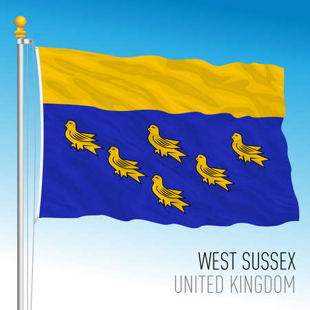 Wesy Sussex county flag, United Kingdom, vector illustration Vettoriali