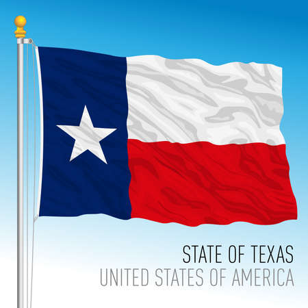 Texas federal state flag, United States, vector illustration Archivio Fotografico - 163200832