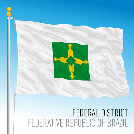 Federal District official regional flag, Brazil, vector illustration 矢量图像