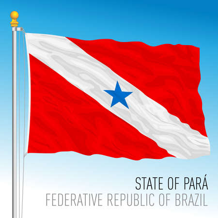State of Para, official regional flag, Brazil, vector illustration