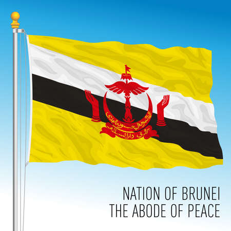 Brunei Darussalam official national flag, asiatic country, vector illustration