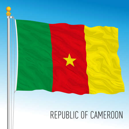 Cameroon official national flag, african country, vector illustration