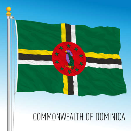 Dominica official national flag, american country, vector illustration