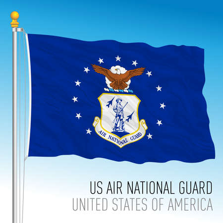 US Air National Guard flag, United States of America, vector illustration