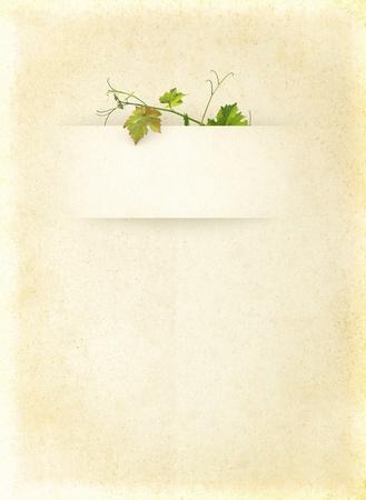 bordure vigne: Menu de la liste de vin avec des feuilles vertes raisins sur le fond de papier blanc vieux cru pour l'affiche du vin sur le vieux parchemin texture