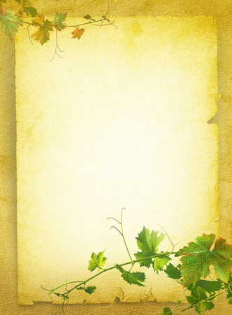 Wine list menu with grapes green leafs on the old blank paper  Vintage background for the wine poster on textured old parchment  photo