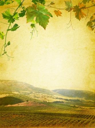 vi�edo: Vino men� de la lista con el vi�edo y la uva verde de fondo hojas de papel de la vendimia para el cartel del vino