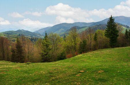 carpathian mountains: Carpathian landscape  Mountain view - intermountain crossing in the Transcarpathian region  Ukraine