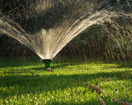 sprinkler: Device of irrigation garden  Irrigation system - technique of watering in the garden  Lawn sprinkler spraying water over green grass  Stock Photo