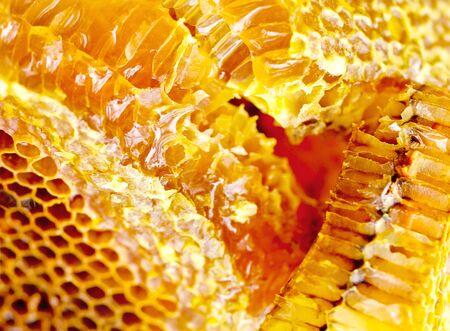 Honey comb background - beekeeping produce photo