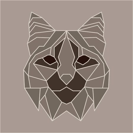bobcat: Brown and beige low poly bobcat. Geometric line art