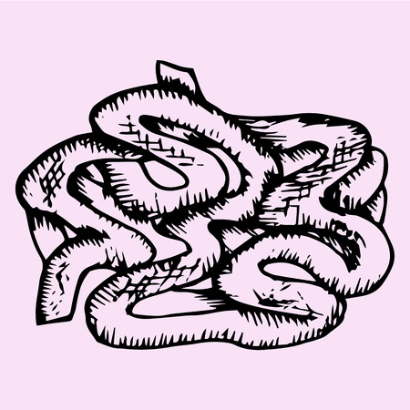 small intestine: Small Intestine, hand drawn, doodle style, sketch illustration