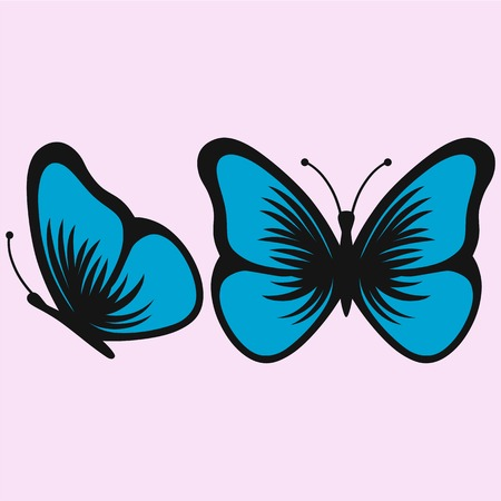 linework: Blue butterfly, vector illustration, isolated on pink background