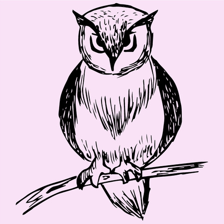 owl on tree branch, doodle style, sketch illustration Ilustracja