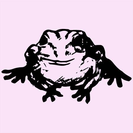 single eyed: edible frog, doodle style, sketch illustration