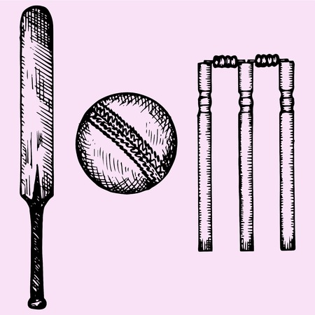 bat and ball: Set of equipment for cricket: bat, ball, wicket, doodle style, sketch illustration, hand drawn, vector Illustration