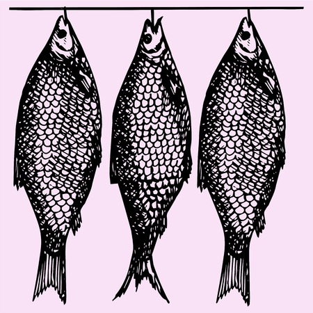 meat food: dried fish, doodle style, sketch illustration