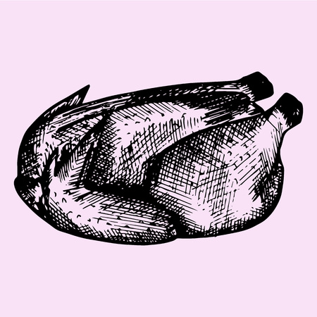ready cooked: Roasted chicken, doodle style, sketch illustration, hand drawn, vector